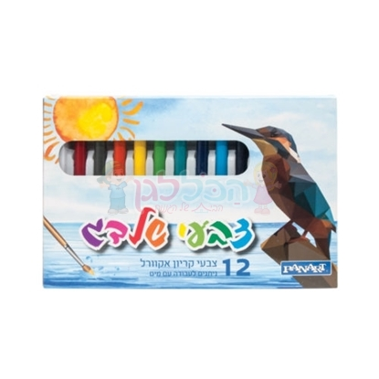 צבעי שלדג קריון 12 יחי'