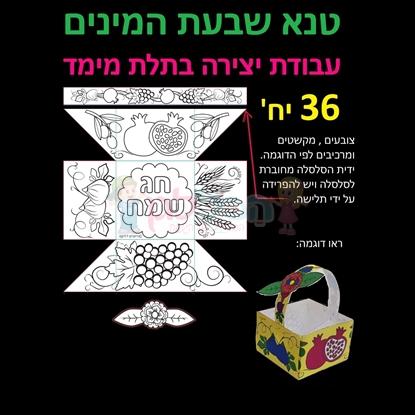 תמונה של טנא שבעת המינים יצירה בתלת מימד 36 יחי'