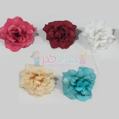 תמונה של פרחים ליצירה צבעים שונים